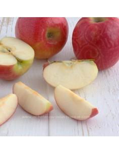 pomme - fruit verger vente en ligne - livraison a domicile panier