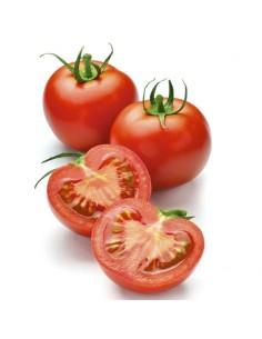 Tomate ronde - livraison fruit et legume course domicile - achat en ligne