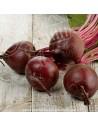 betterave - légume frais vente en ligne - livraison paniers a domicile