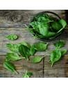 epinard - legume vente en ligne - livraison a domicile panier