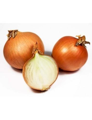 oignon - legume vente en ligne - livraison a domicile panier